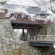 信濃路・・・桜咲く・・・日本の三大湖城・・・諏訪の浮城・・・高島城