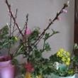お花の教室 開催・・・・