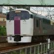 2017年9月20日 東海道貨物線 東戸塚 215系 NL2編成
