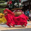 獅子飾卸・藤崎八旛宮例大祭2017
