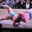 日記(9.23)相撲
