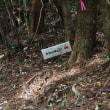 ようやく女鈴山の登山道の案内看板が見えました。 (Photo No.14157)