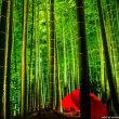 海外「日本は当時から先進国だったんだ!」 90年前の京都を映した音声付き映像が凄い