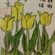 2018年5月17日の絵手紙