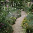 咲き誇る Rose Garden を訪ねました