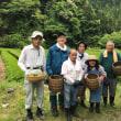 2018ボランティア茶摘み・無事終了❢ 5/26
