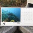かながわ海岸美化財団の海のカレンダーに採用されました。