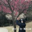 春の足音とともに〜「2018・主婦日記」の第7週目〜