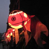 柳井市 金魚ちょうちん点灯