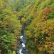 「雨の中津川渓谷」 福島県 裏磐梯 レークラインにて撮影!
