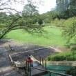 丸山公園の「元気祭り」