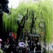写真 カメラ散歩 京都 六角堂