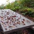 2015/10/17(火) 瀬戸蔵山、百間滑の紅葉はまだまだ