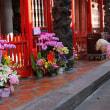 のんびり・台湾 台北市 癒しのお寺・龍山寺 10