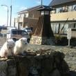 浜名湖畔の宿場町・舞坂宿探訪
