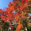 18年10/20~開田高原のー0.2℃