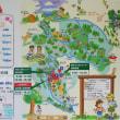 神奈川県立21世紀の森(神奈川県南足柄市) 森について学べる森林館