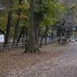 a park