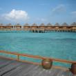 モルディブ・スリランカの旅①
