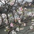 古代の造形/モノづくり日本の原点
