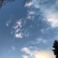 白山神社で手を合わす先は、春日大社のご神体山である春日山でした
