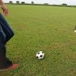ボールの持ち運び方
