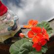 ツアー58番目 佐賀市文化会館に青空と花びら添えて