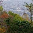 高尾山創造の森 健康ウオーキング