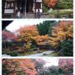 オープンデッキバスで行く京都紅葉めぐり