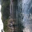 藍ケ江。エイとヒラマサとムロとカメ。