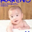 『100日記念 1枚¥1000♪』 札幌格安写真館フォトスタジオ・ハレノヒ