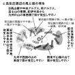 猪熊隆之の観天望気講座96