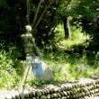 太田市の山でギンリョウソウを見つけようとしたが・・・・・