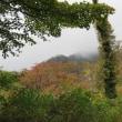 10月9日~ 大山古道を歩く その4
