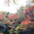 茨城県 花貫渓谷の紅葉
