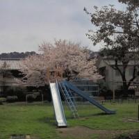 20150401_八軒町公園_高知市