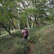 稲村ヶ岳に登りました