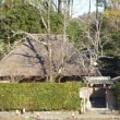 1314 「保津峡、嵯峨野竹林そして落柿舎の初冬」