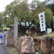 犬山市・秋の祭り会場を巡るウオーキング