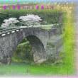 『 奪う者奪われる者春山河 』平和の砦575交心zry2209