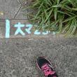 ☆大阪マラソン2017への道vol.15☆