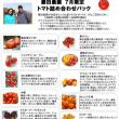 7月のお野菜おまかせ宅配パック・トマト詰め合わせパック