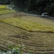 山間のコシヒカリ・・無事刈取り終了で、ホッ!。明日から台風と秋雨前線の影響で天候が不順のようです。