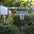 愛媛松山の旅②