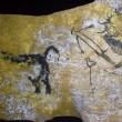 地下壁画芸術から、何をいかに読み解くか?・・「ラスコー展」に行ってきた(2)