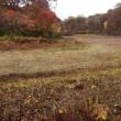 天生の紅葉「木平~天生湿原」2017.10.14