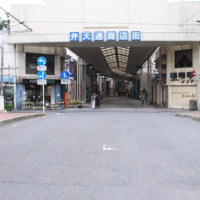 比刀根橋 (群馬県)