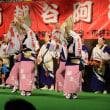 南越谷の阿波踊り