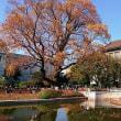 上野、「皇室の彩り」展