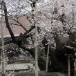 平成30年4月19日(木) 東北へ♪